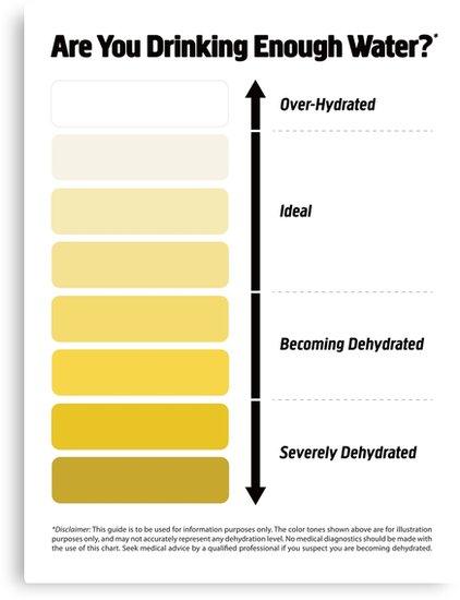 urine chart.jpg