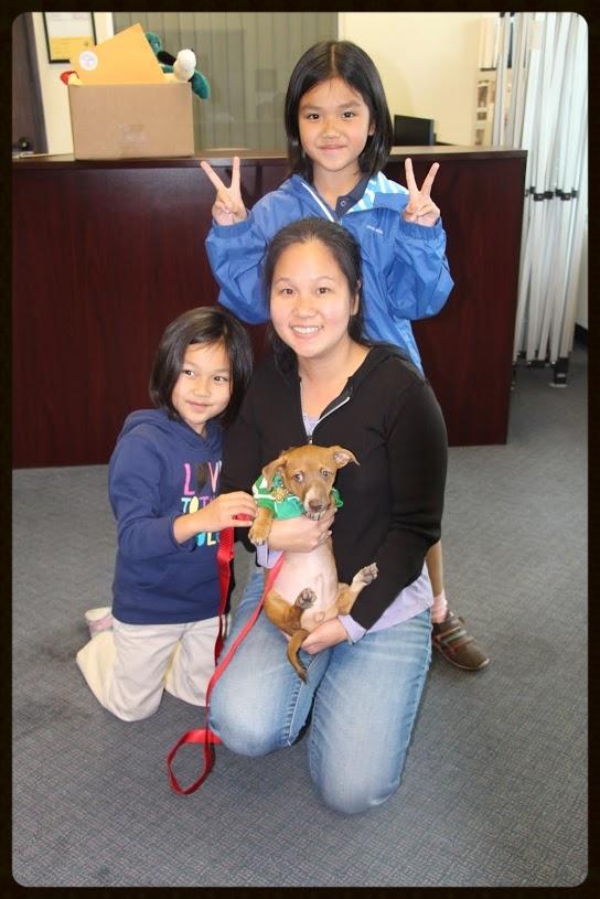 Sulley's Adoption Photo