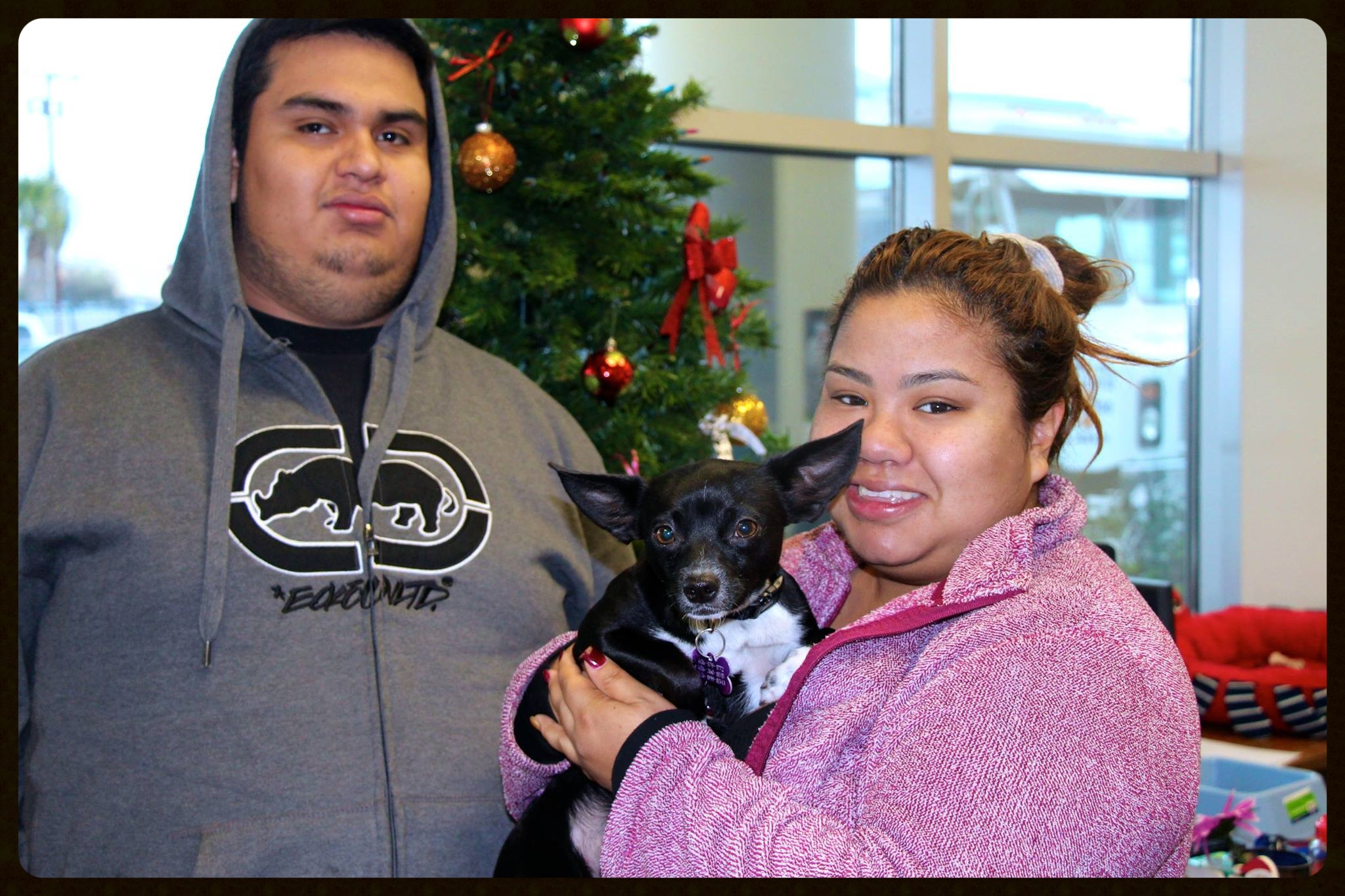 Oreo Adoption Photo