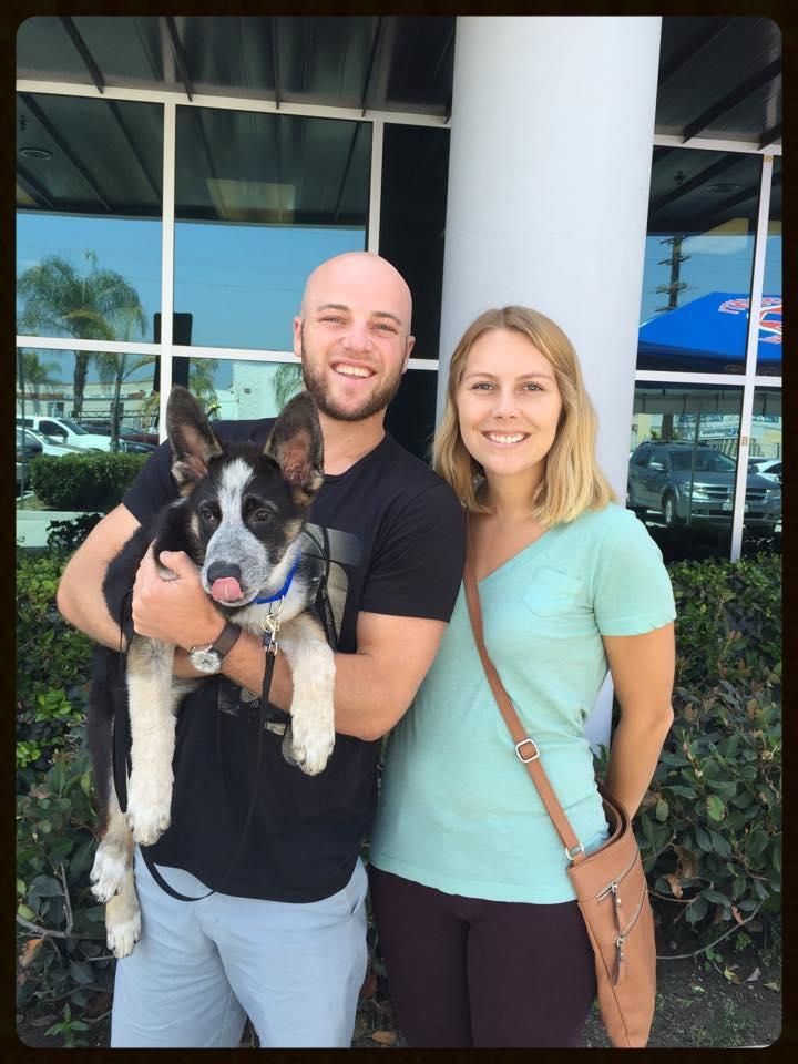 Ace Adoption Photo