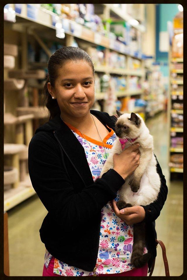 Maggie Adoption Photo