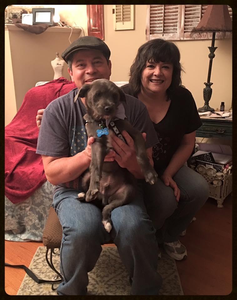 Ross Adoption Photo