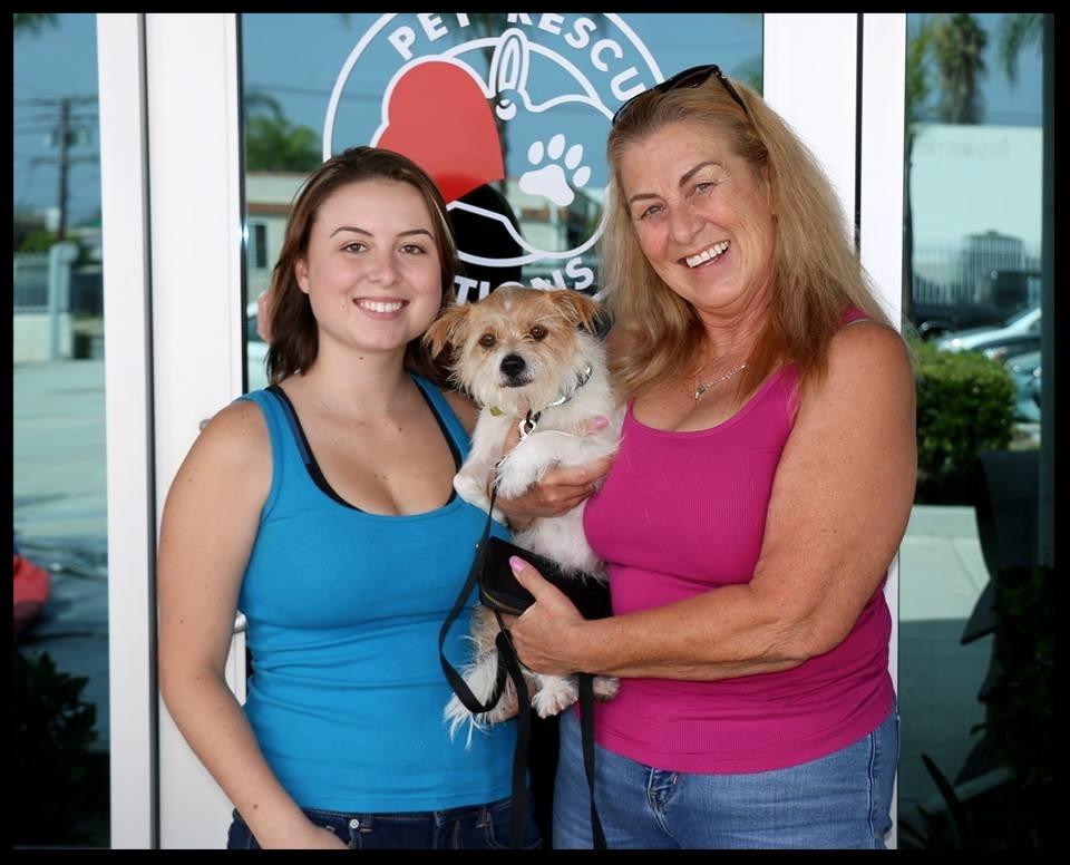 Belle's Adoption