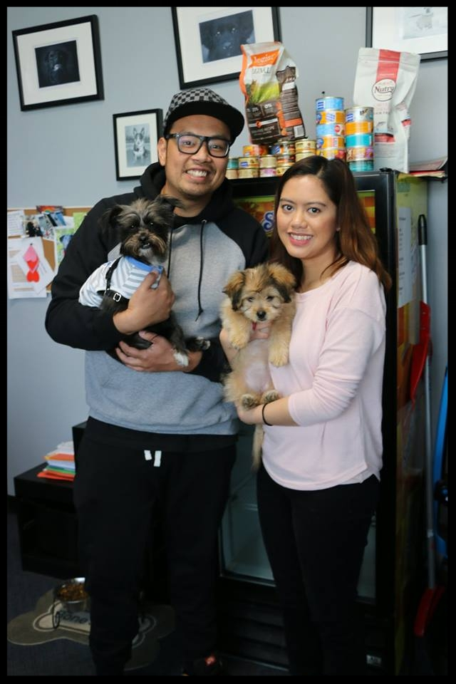 Pucca Adopted.jpg