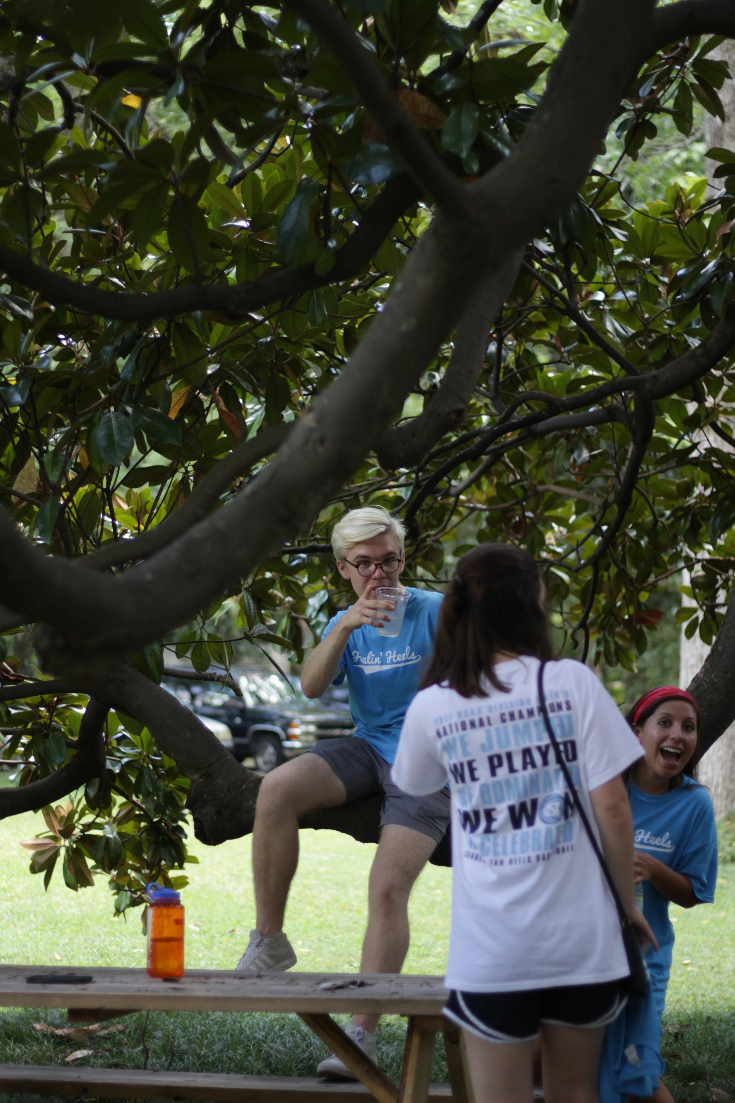 TreeHangout2.JPG
