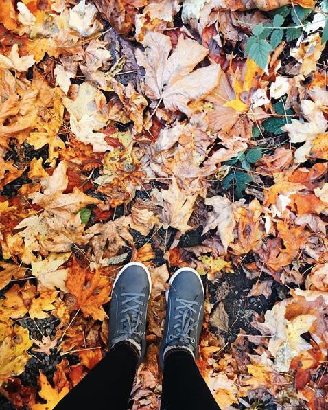 Foot Petals Andi Classic 1 | Writing Between Pauses