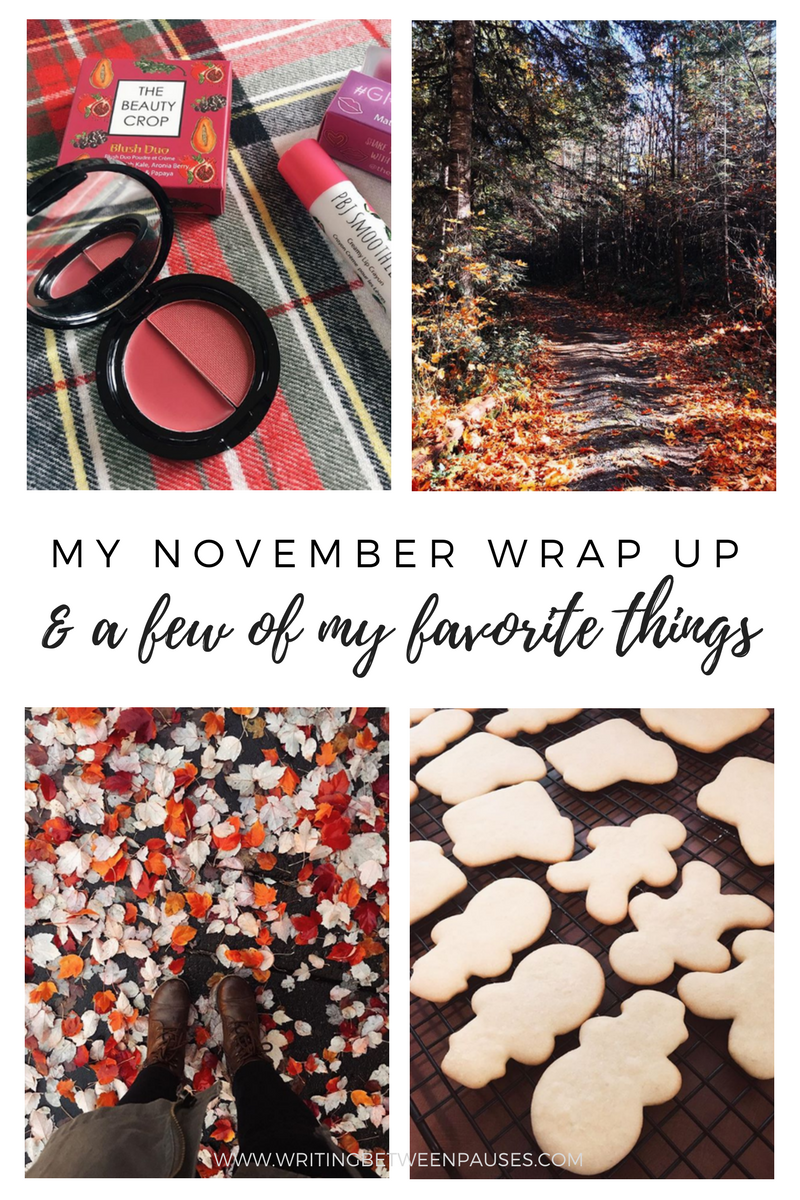 My November Wrap Up | Writing Between Pauses