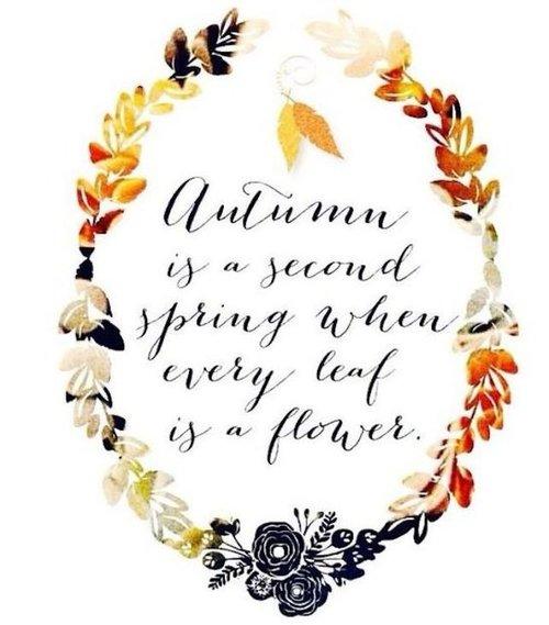 Autumn Quote 7