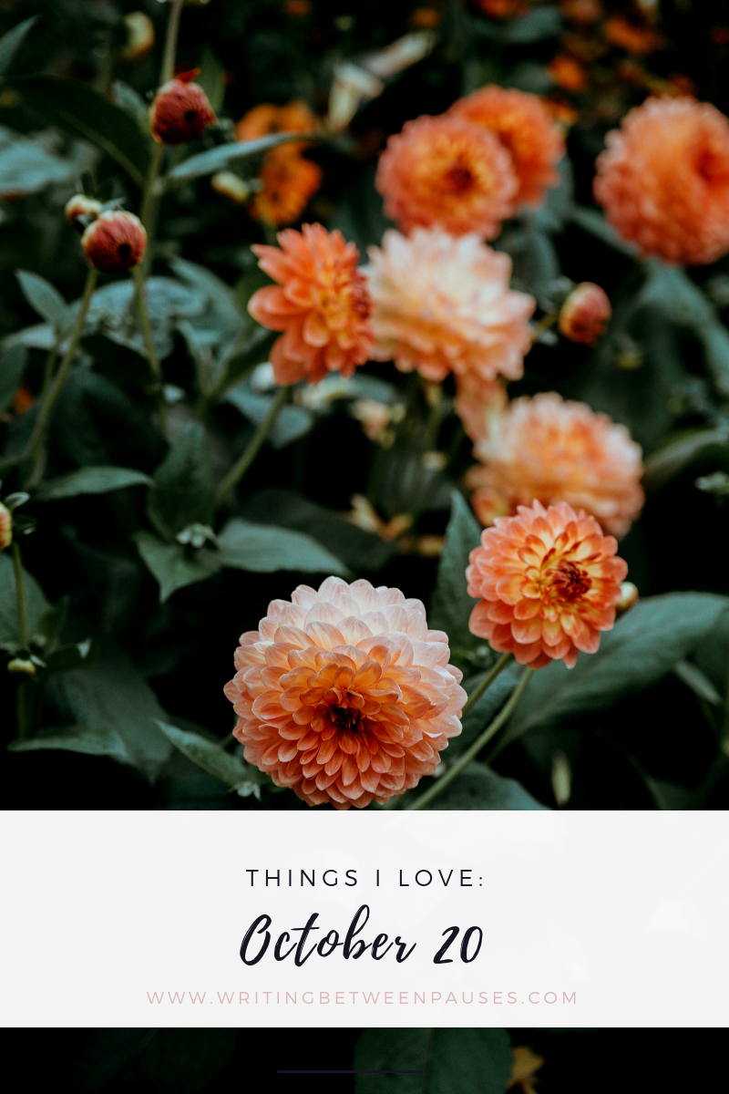 Things I Love: October 20 | Writing Between Pauses