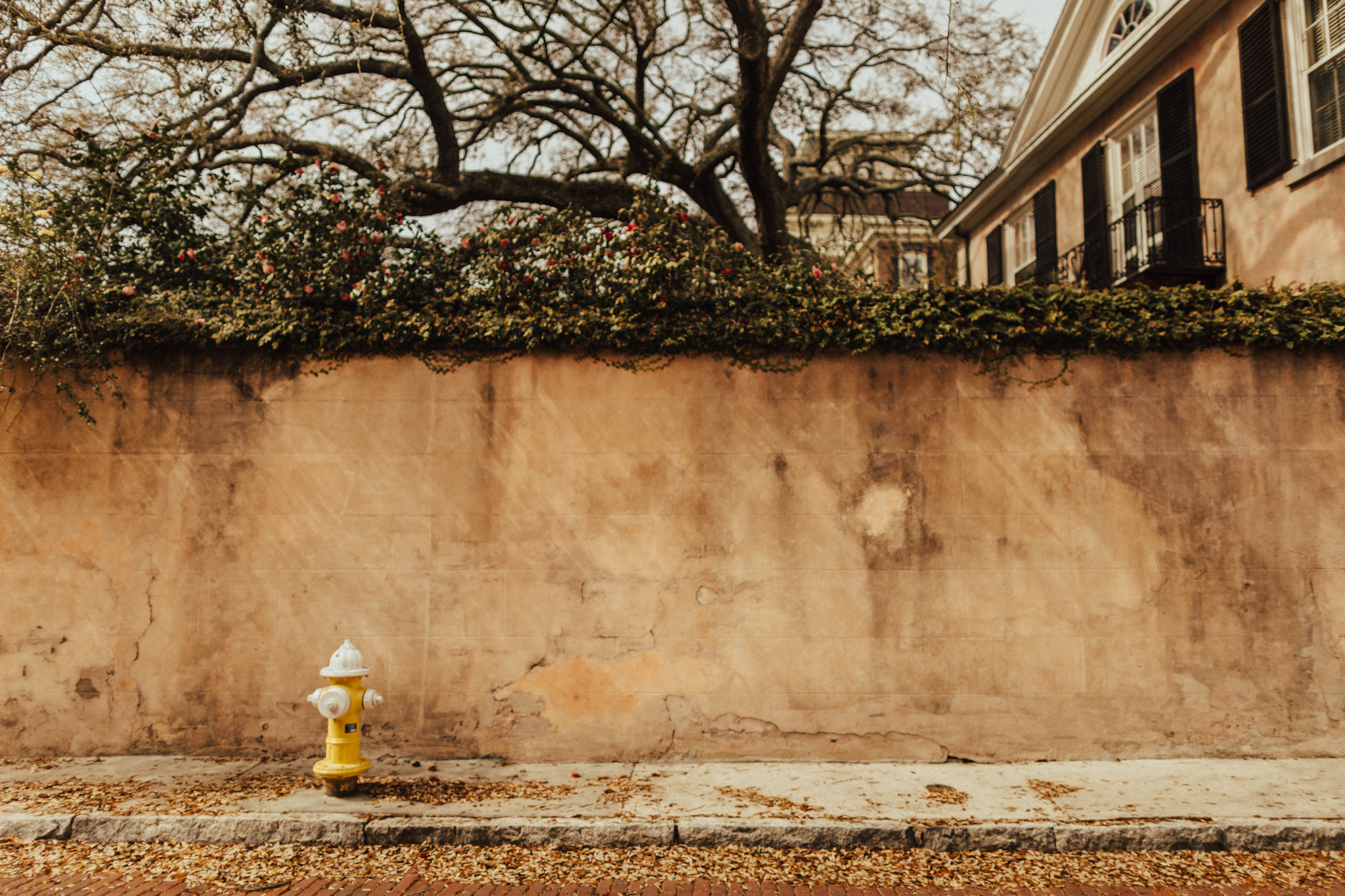 Beautiful Doorways in Charleston South Carolina-2.jpg