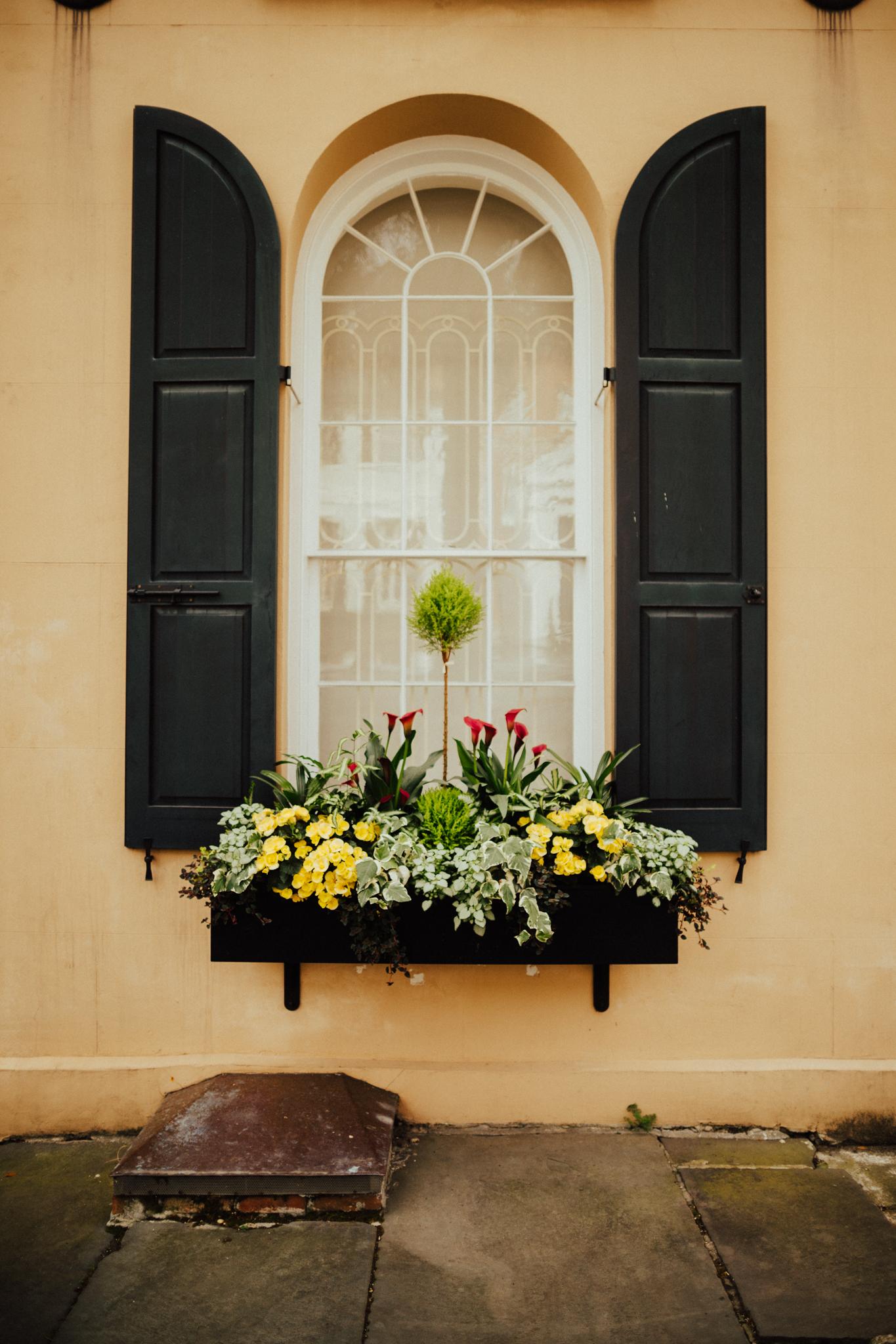 Beautiful Doorways in Charleston South Carolina-26.jpg