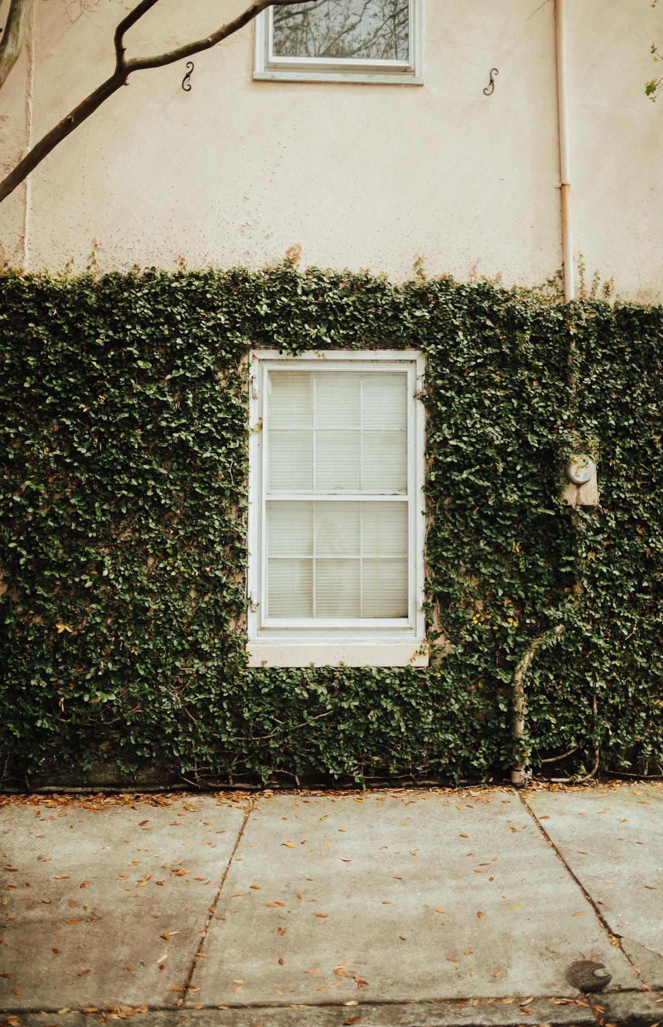 Beautiful Doorways in Charleston South Carolina-37.jpg