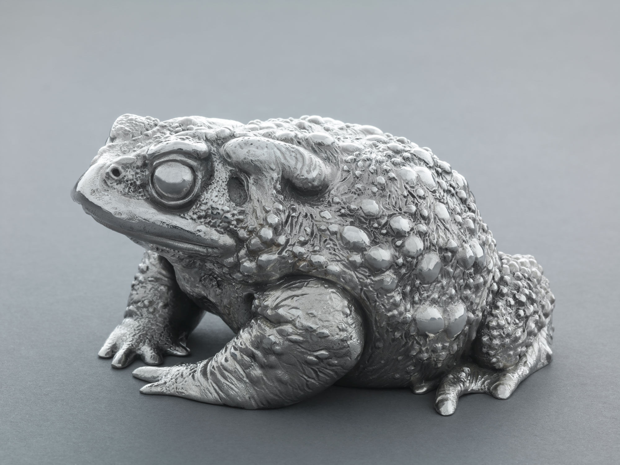 9. Silver Toad II by Nick Bibby, Edition of 12, 3 x 6 x 5 inches (8 x 15 x 13cm).jpg
