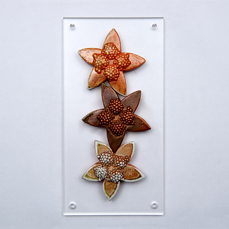 101.Botanical Structures Star Flower Heads