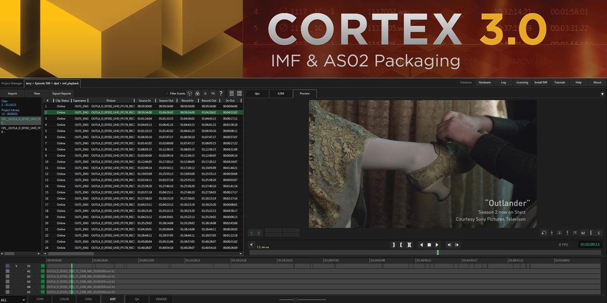 MTI-NAB-Cortex-IMF.jpg
