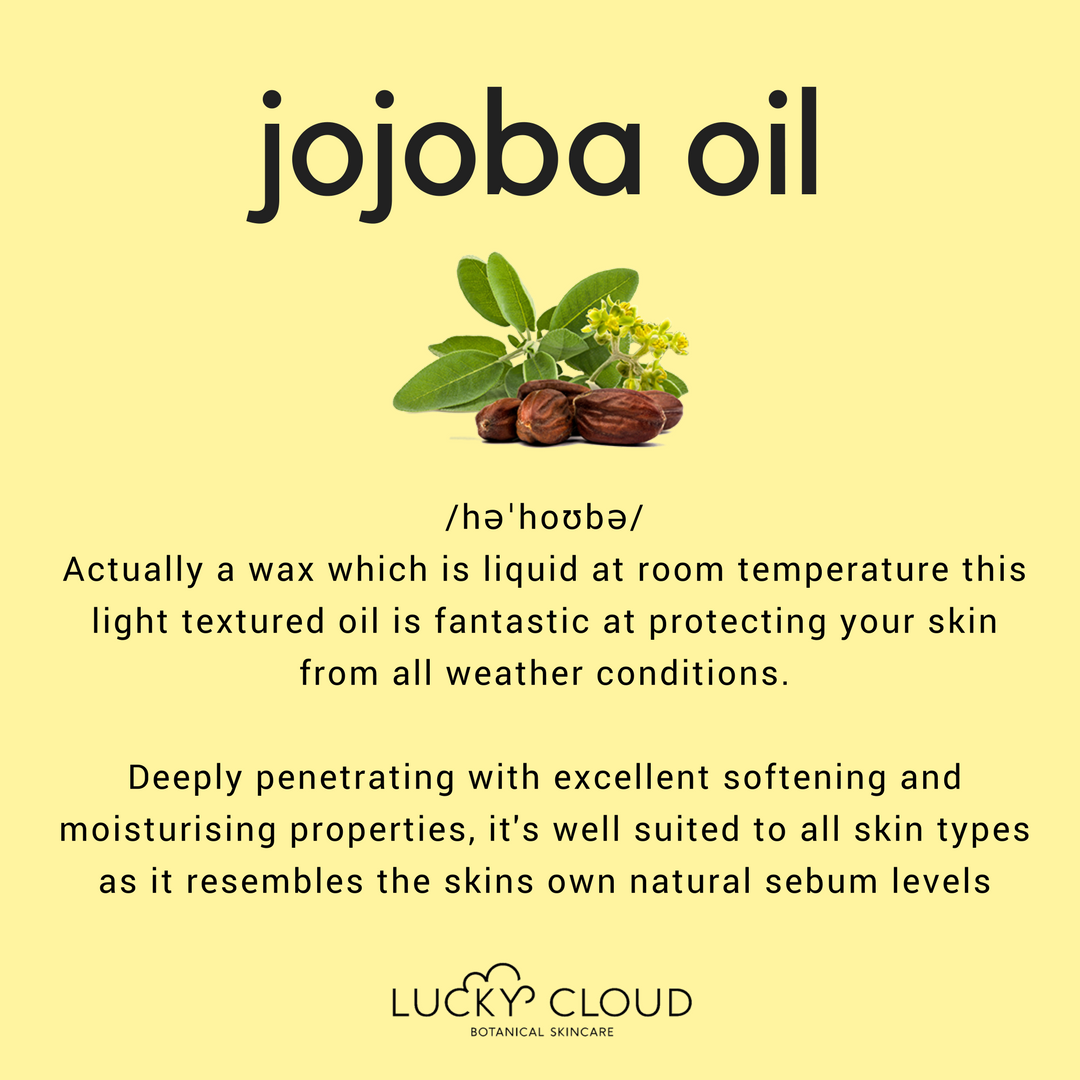 Lucky Cloud Skincare - ingredient highlights - Jojoba Seed oil