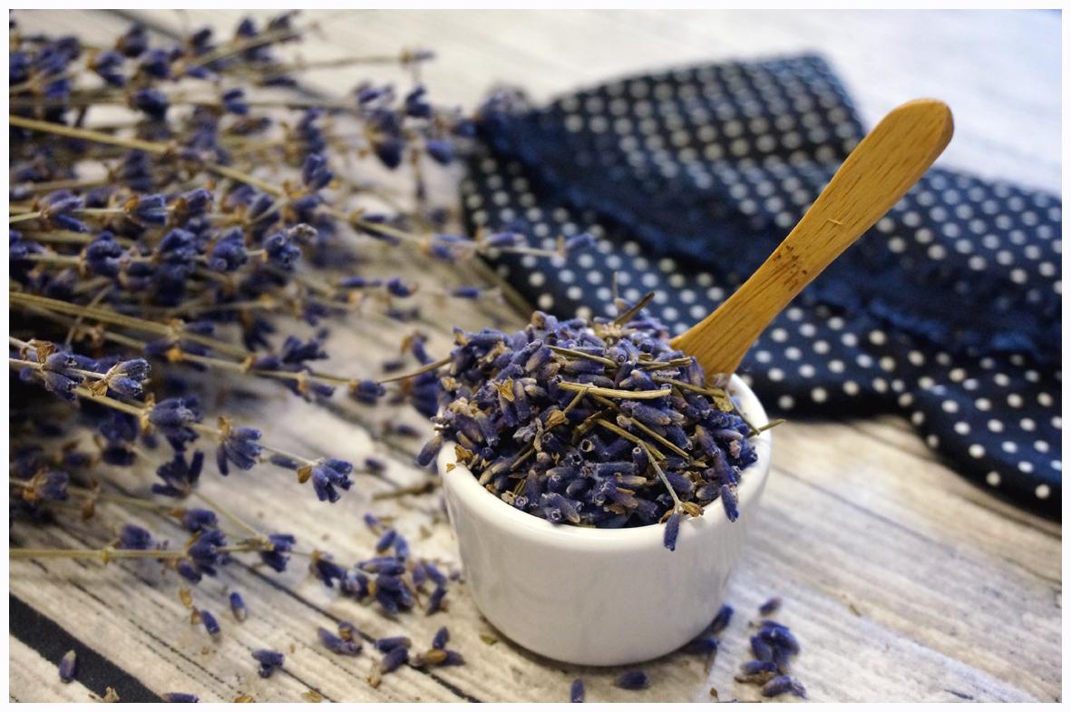 Lavender_LCS_02.jpg