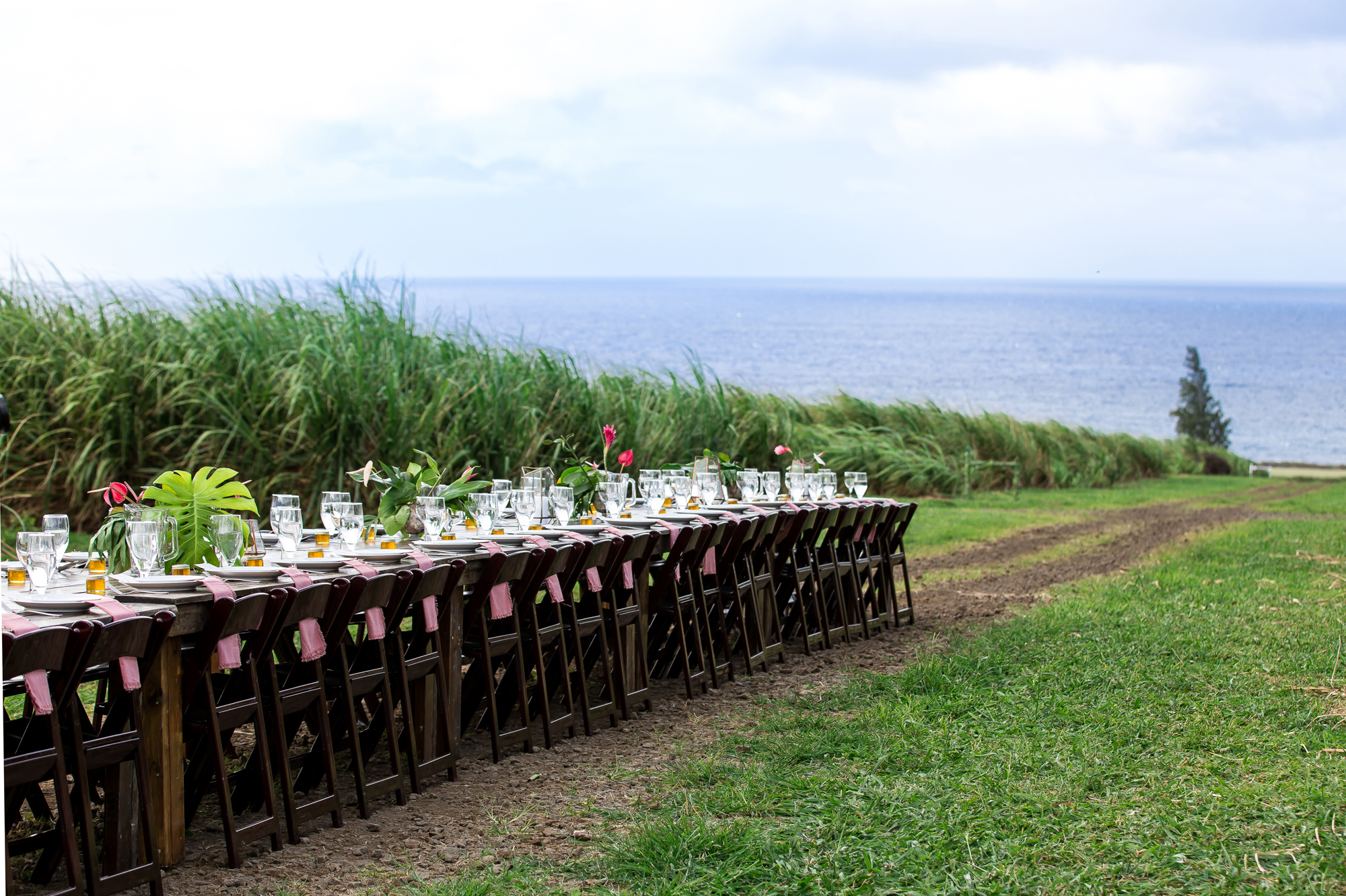 SecretSupper_Hawaii_March2019_0042_photocreditCarlyDiaz.jpg