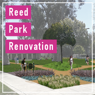 Reed Park