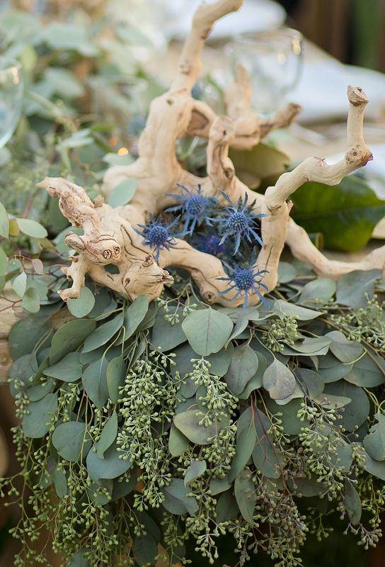 Wood & Eucalyptus.jpg