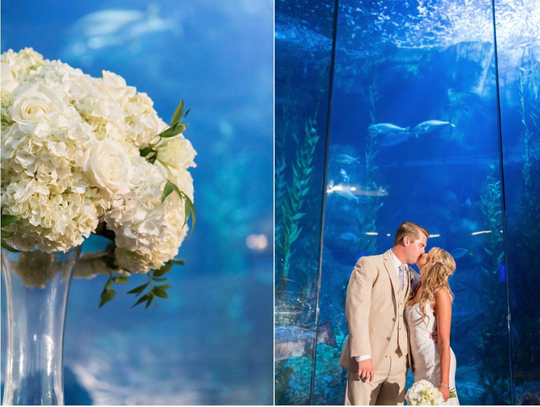 Aquarium Blue White.JPG