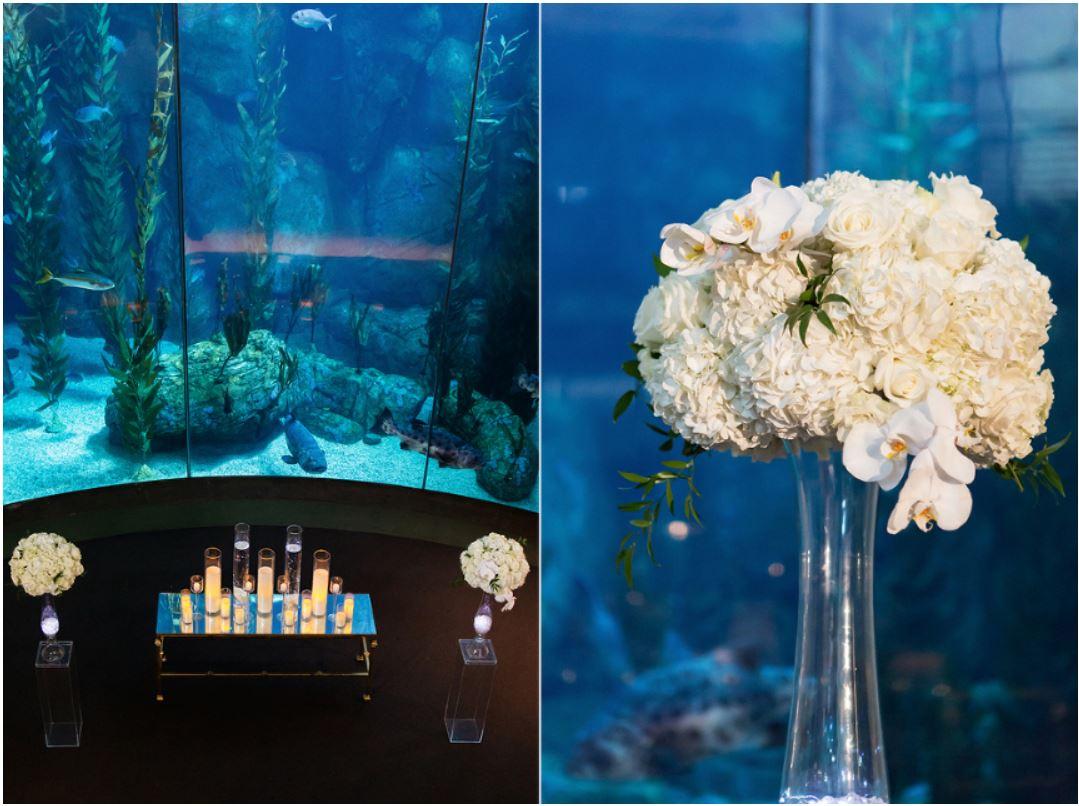 Aquarium Ceremony Decor.JPG