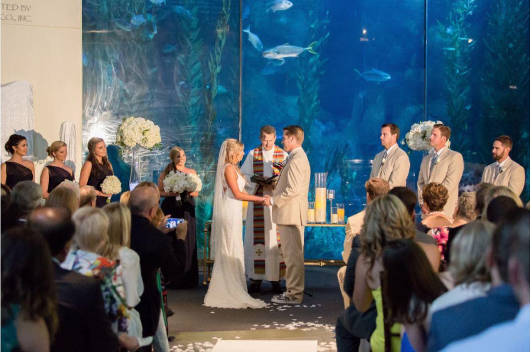 Aquarium Ceremony.JPG
