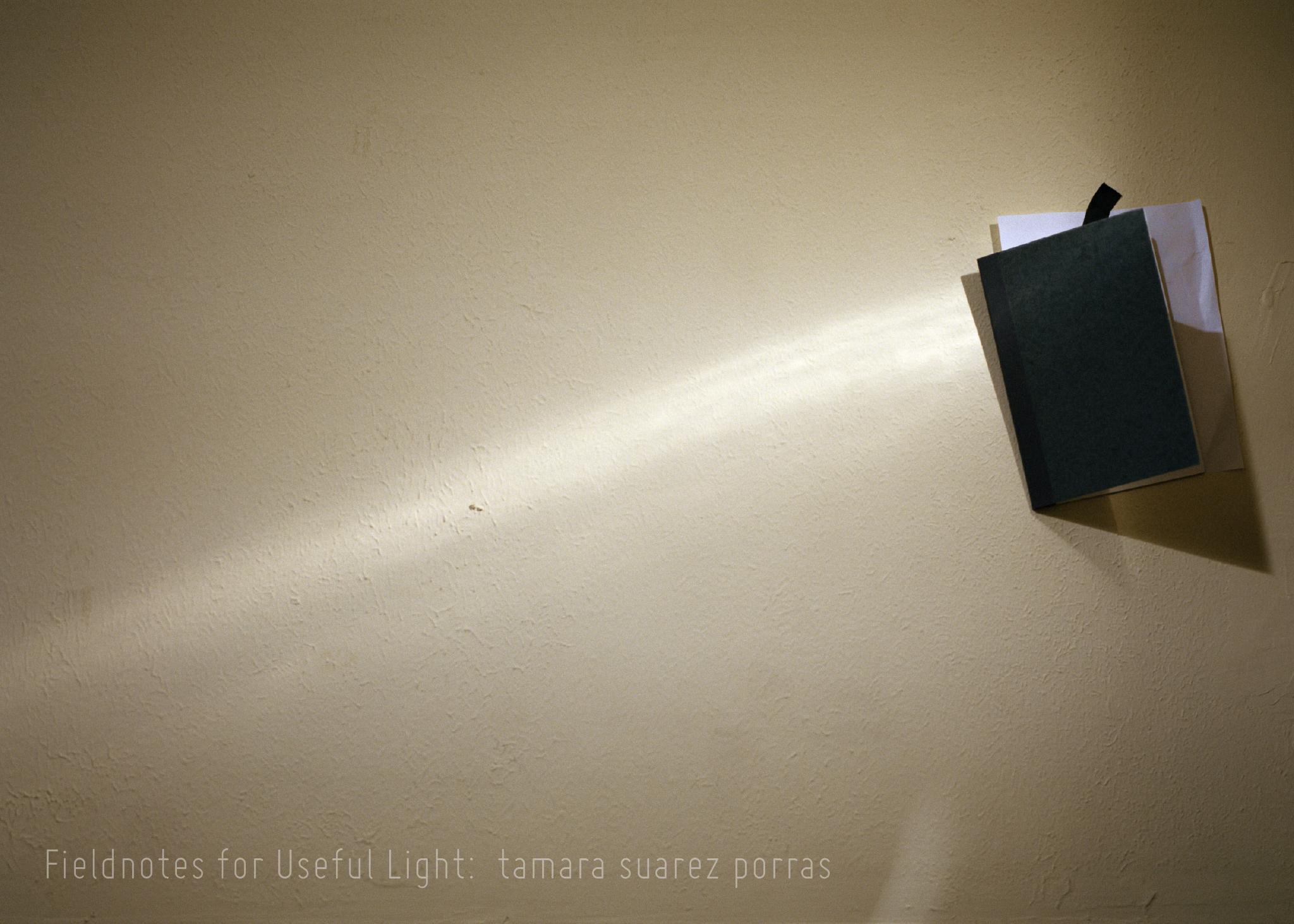 Fieldnotes for Useful Light: tamara suarez porras   06.15.18-07.14.18