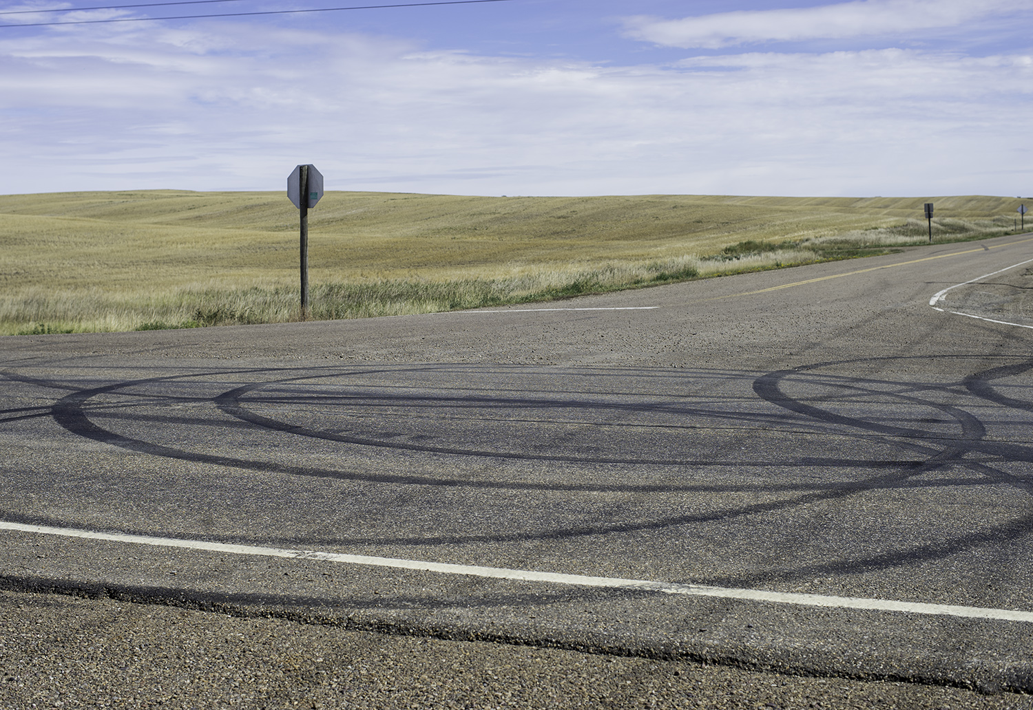 Road tire marks.jpg