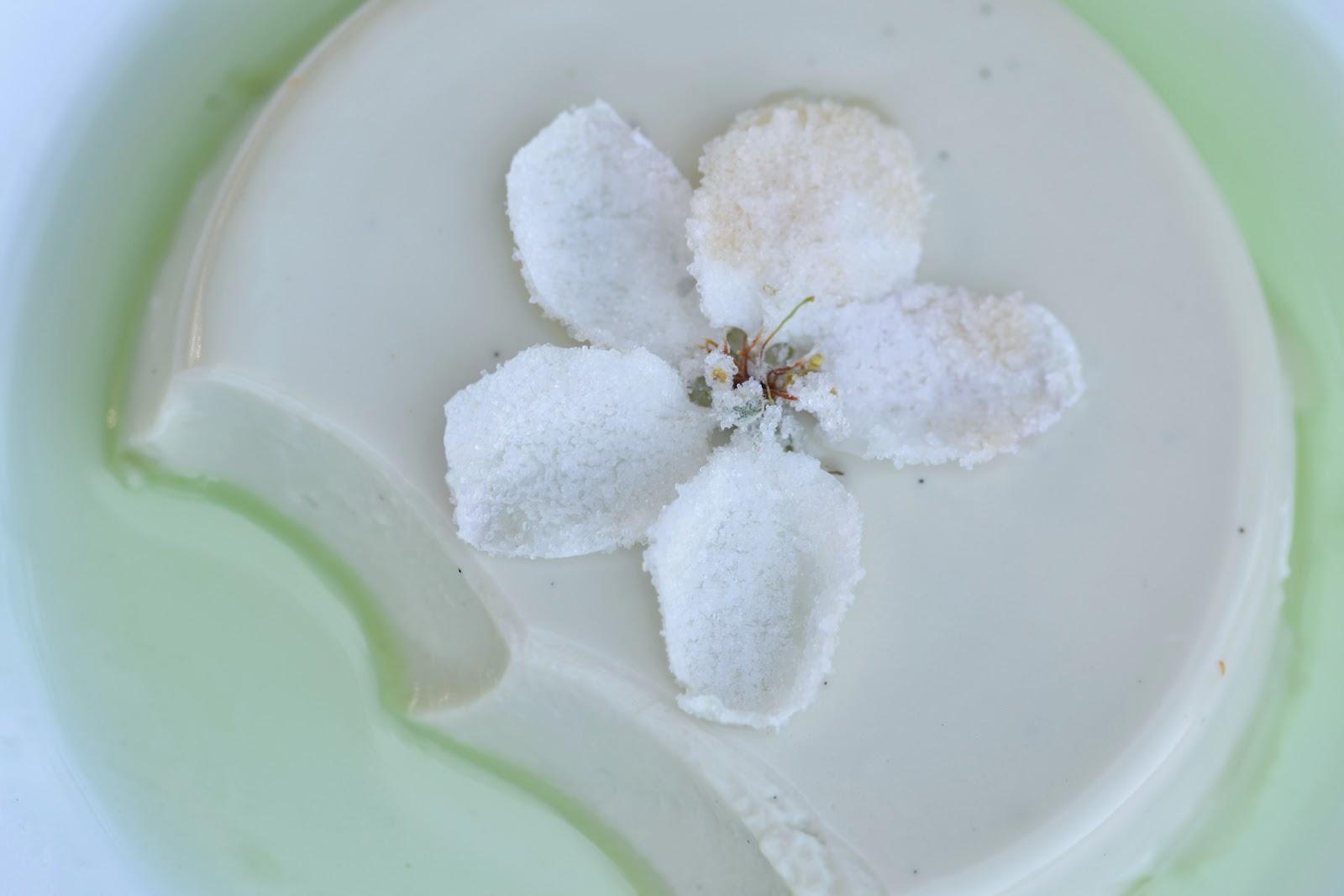 2-apple-mint-panna-cotta.jpg