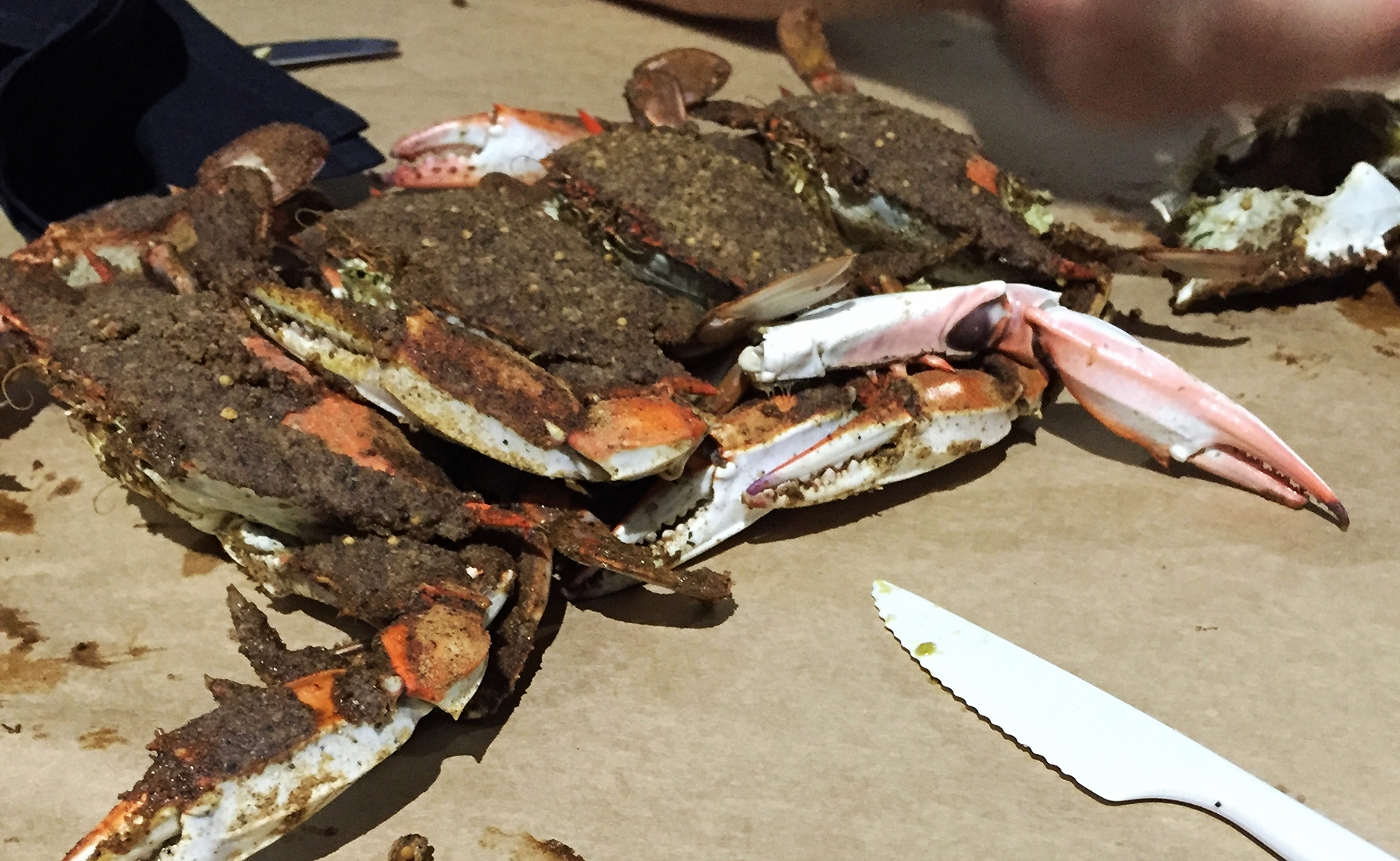 Enjoying Maryland crabs outside on a deck at a local restaurant