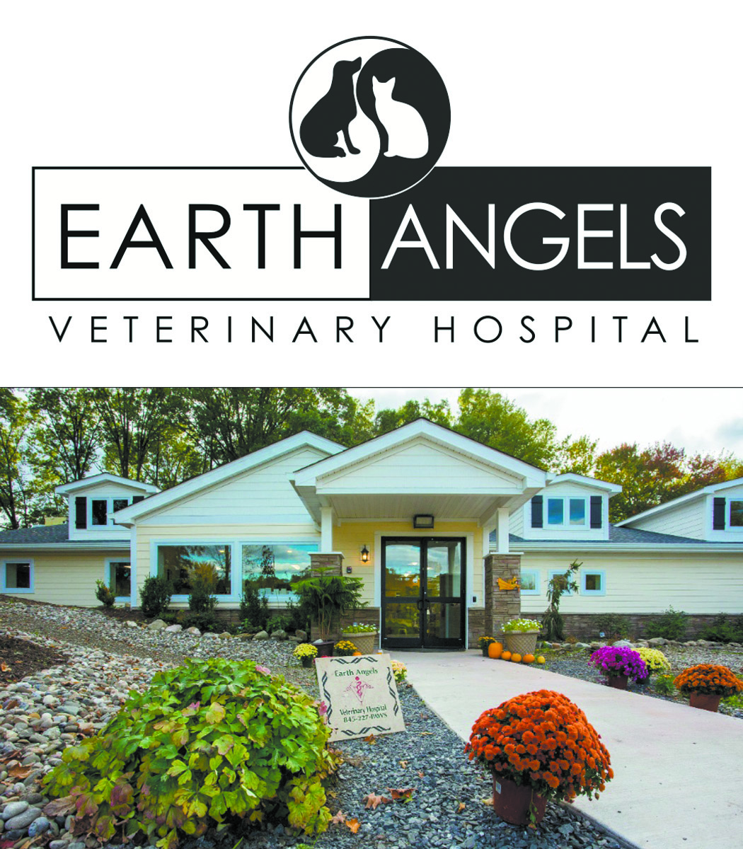 ALTERNATIVE & CONVENTIONALThe best integrative medicine available for a holistic approach to your pet's healthcare. - 44 Saint Nicholas Road, Wappingers Falls, NY845.227.7297more…