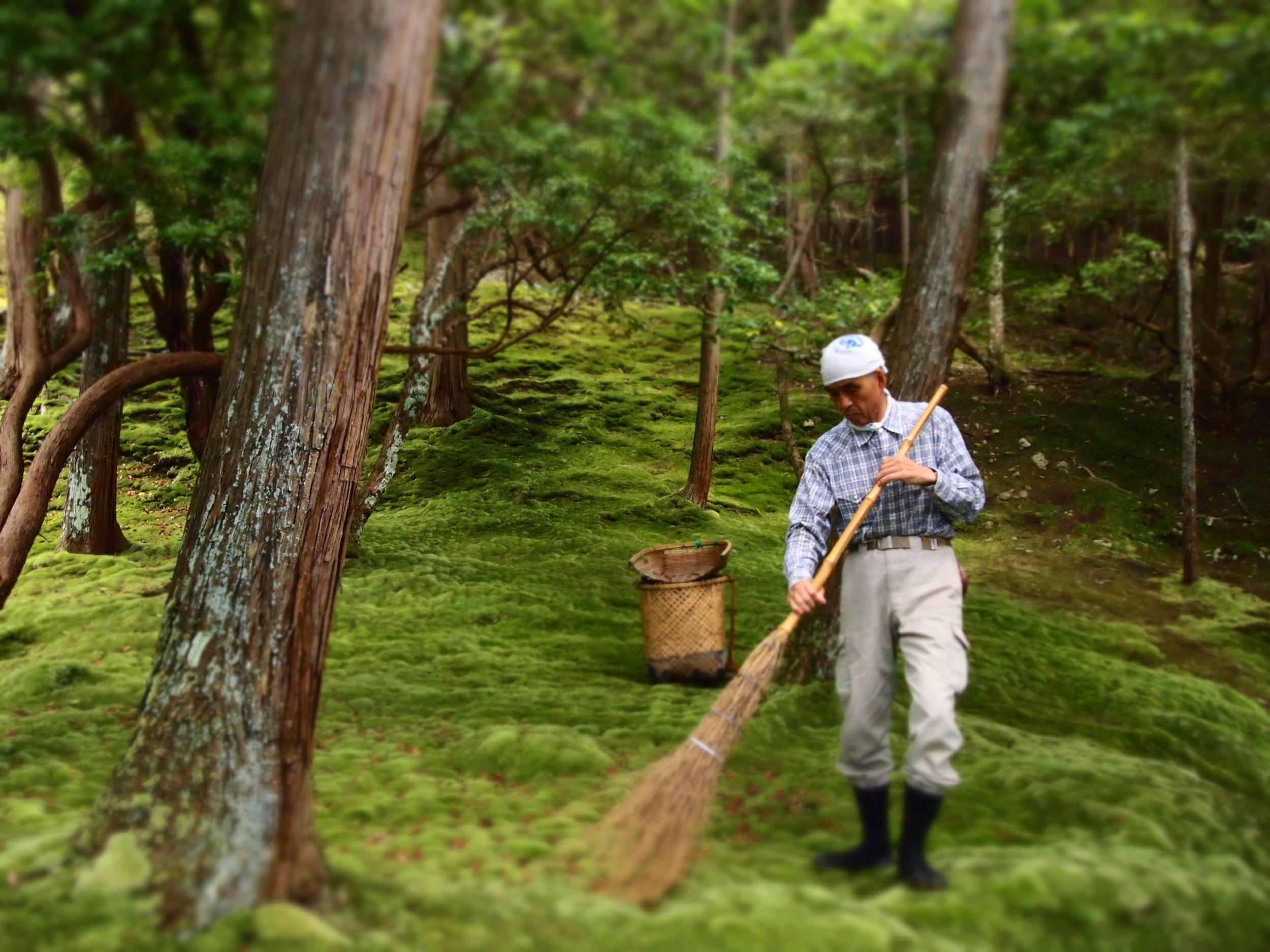 moss gardener.JPG