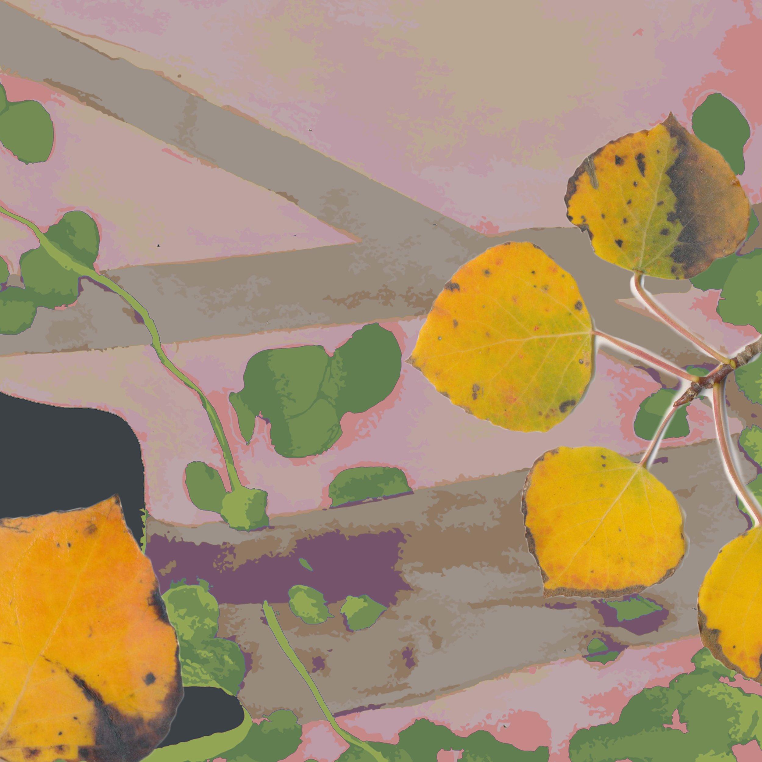 4-peach.jpg