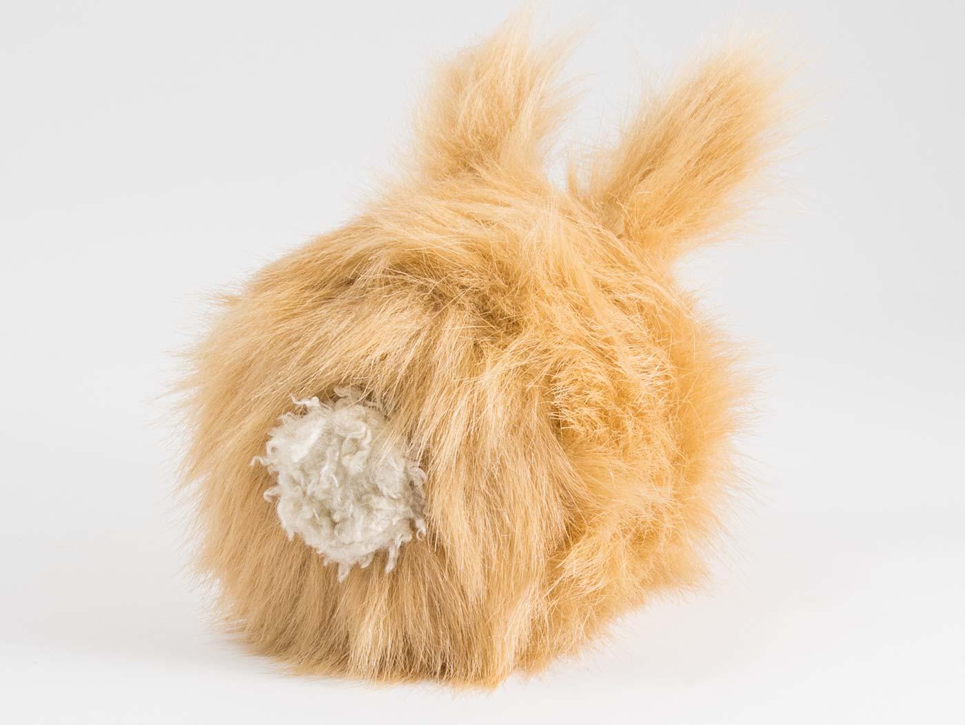 dust-bunny-3.jpg
