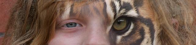 Sumatran-Tiger-homeo.jpg