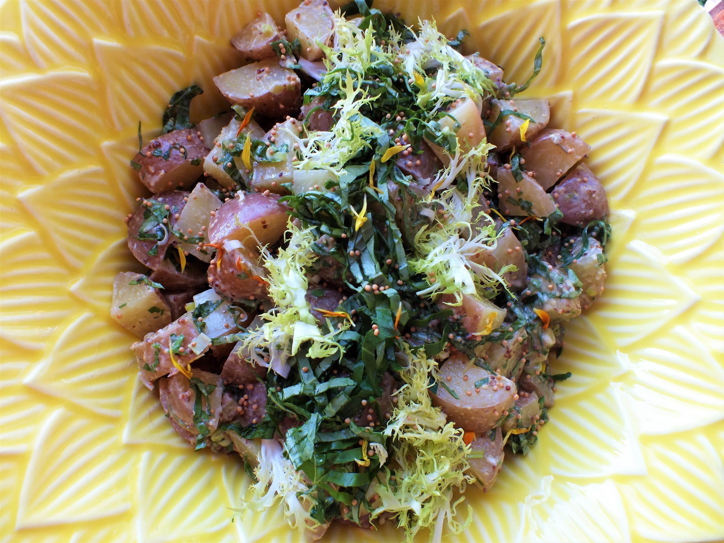 Red Potato Salad with Creamy Mustard Seed Dressing, Herbs & Frisee