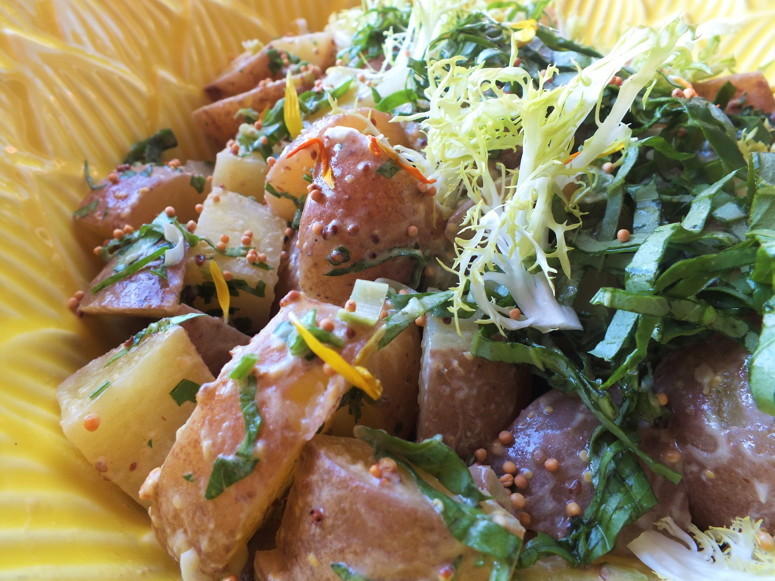 Red Potato Salad with Mustard Seed Dressing, Herbs & Frisee