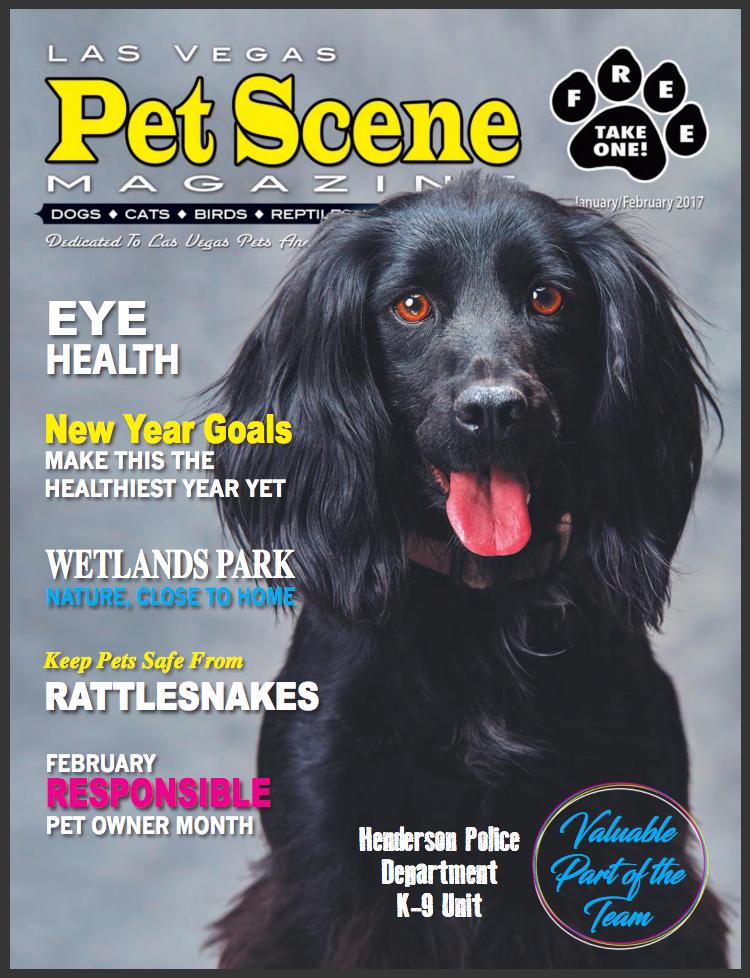 Las Vegas Pets - Cover.png