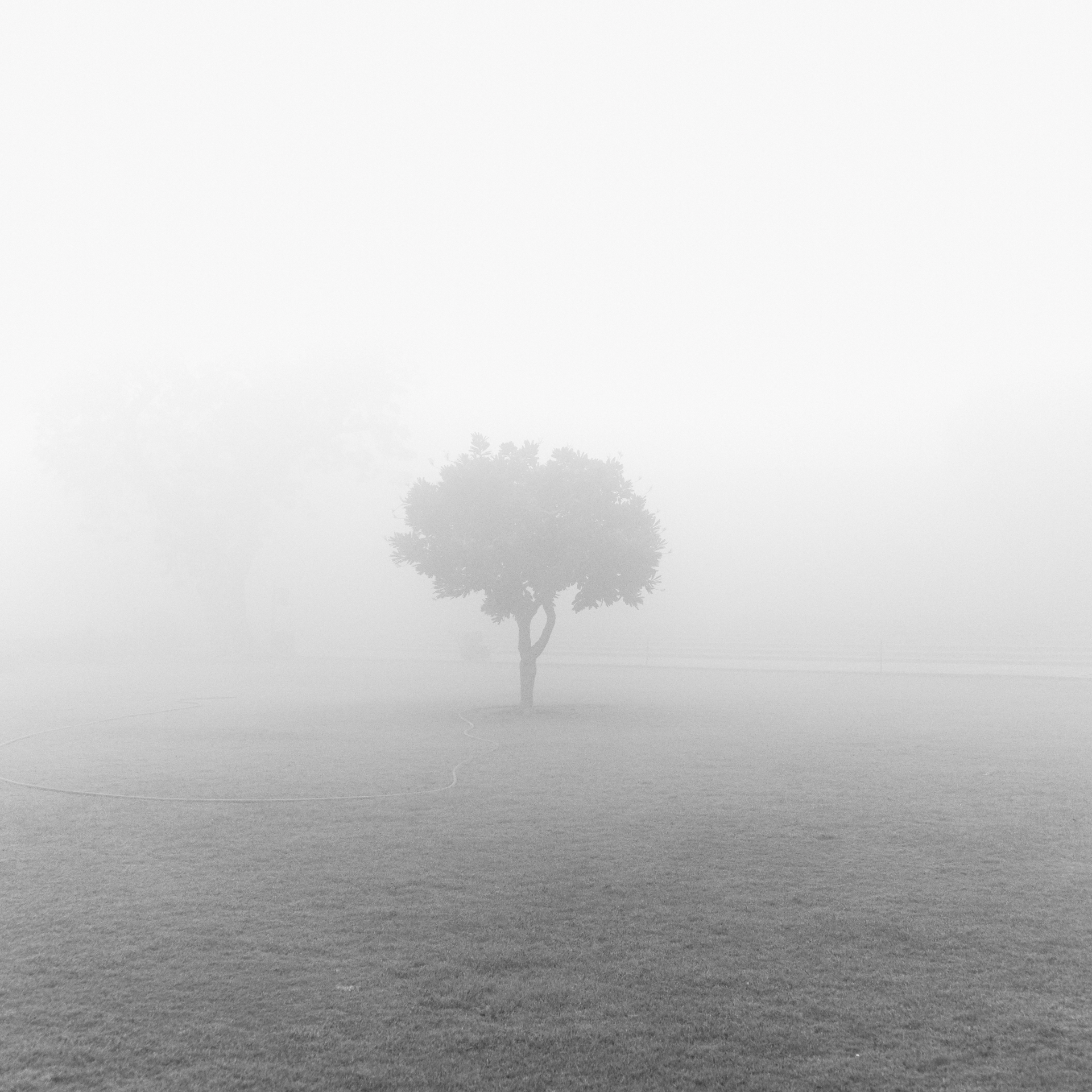 Solitude 1.jpg