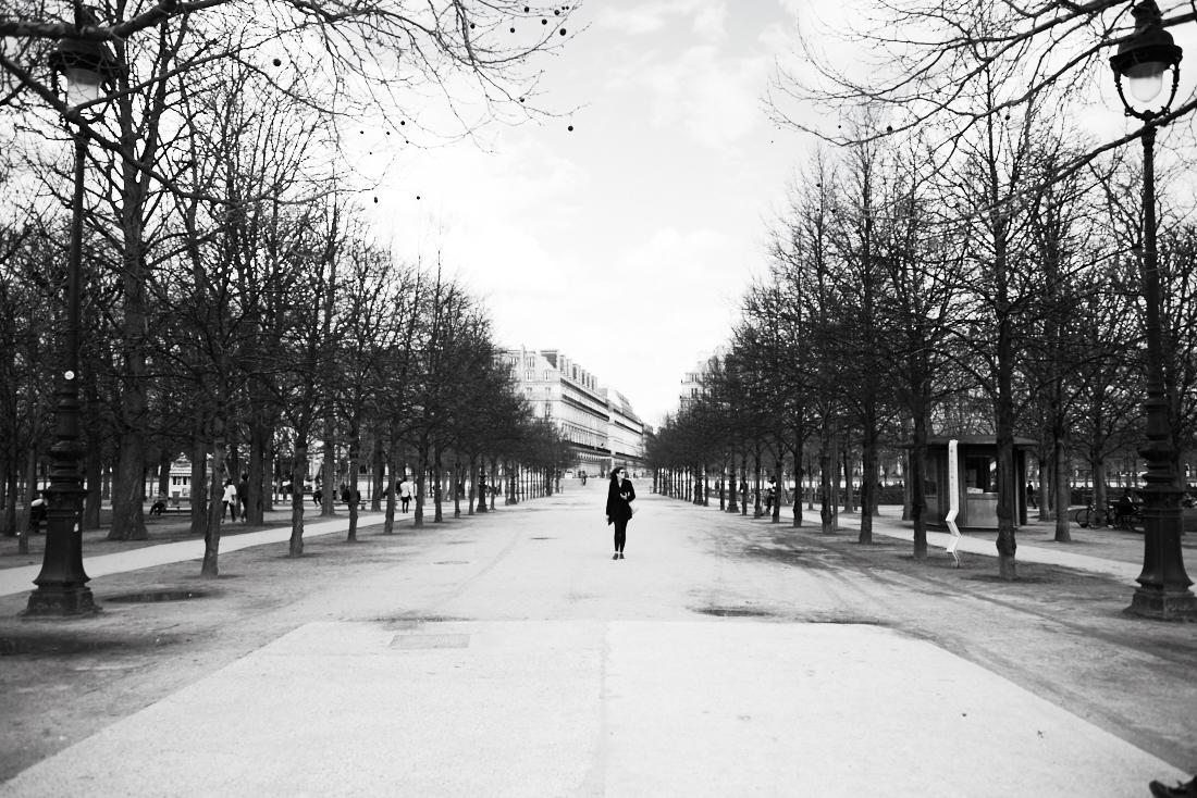 PARIS 15.jpg