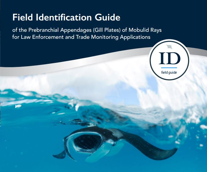 Gill ID cover