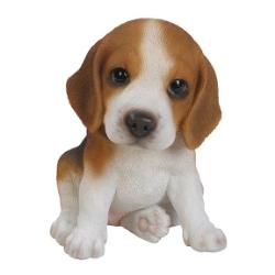 Beagle Puppy.jpg