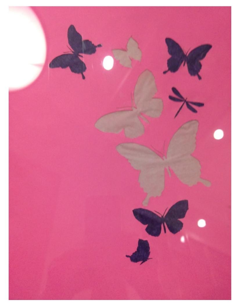 butterfly cutouts.jpg