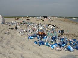 Masonboro Island litter