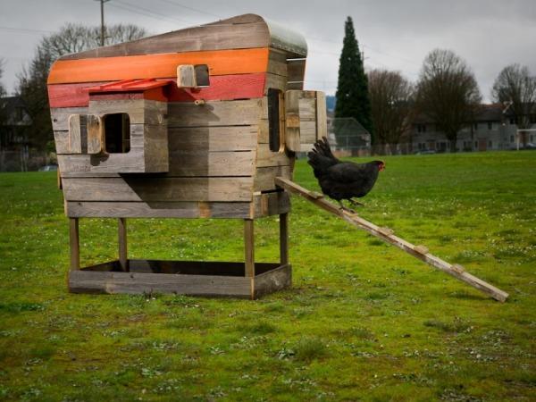 Winnebago Chicken Coop