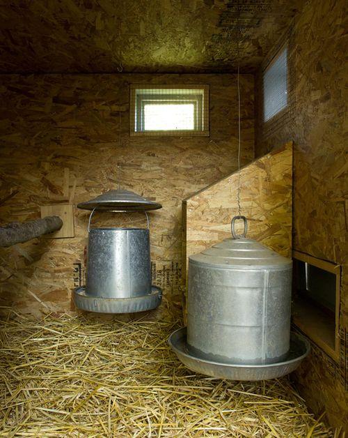 chicken coop interior.jpg