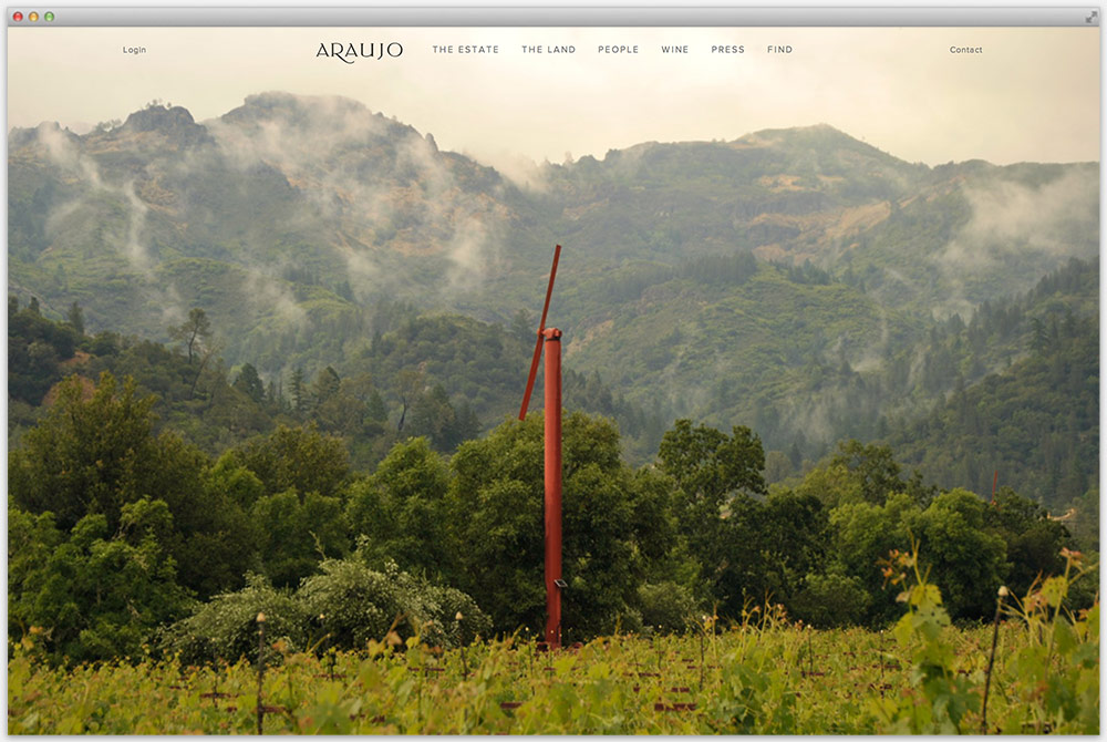 araujo_website_hoffmanchrisman.jpg