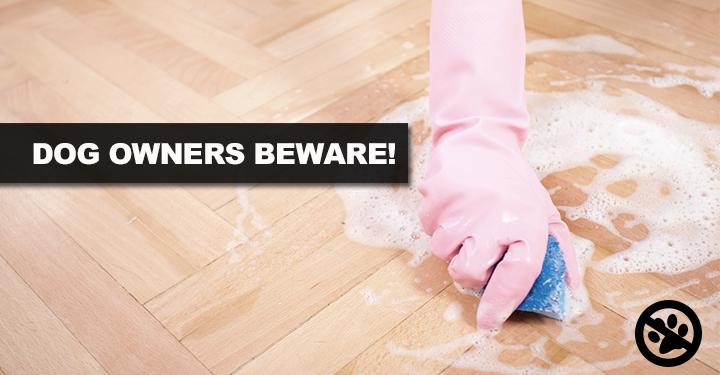 dog owners beware
