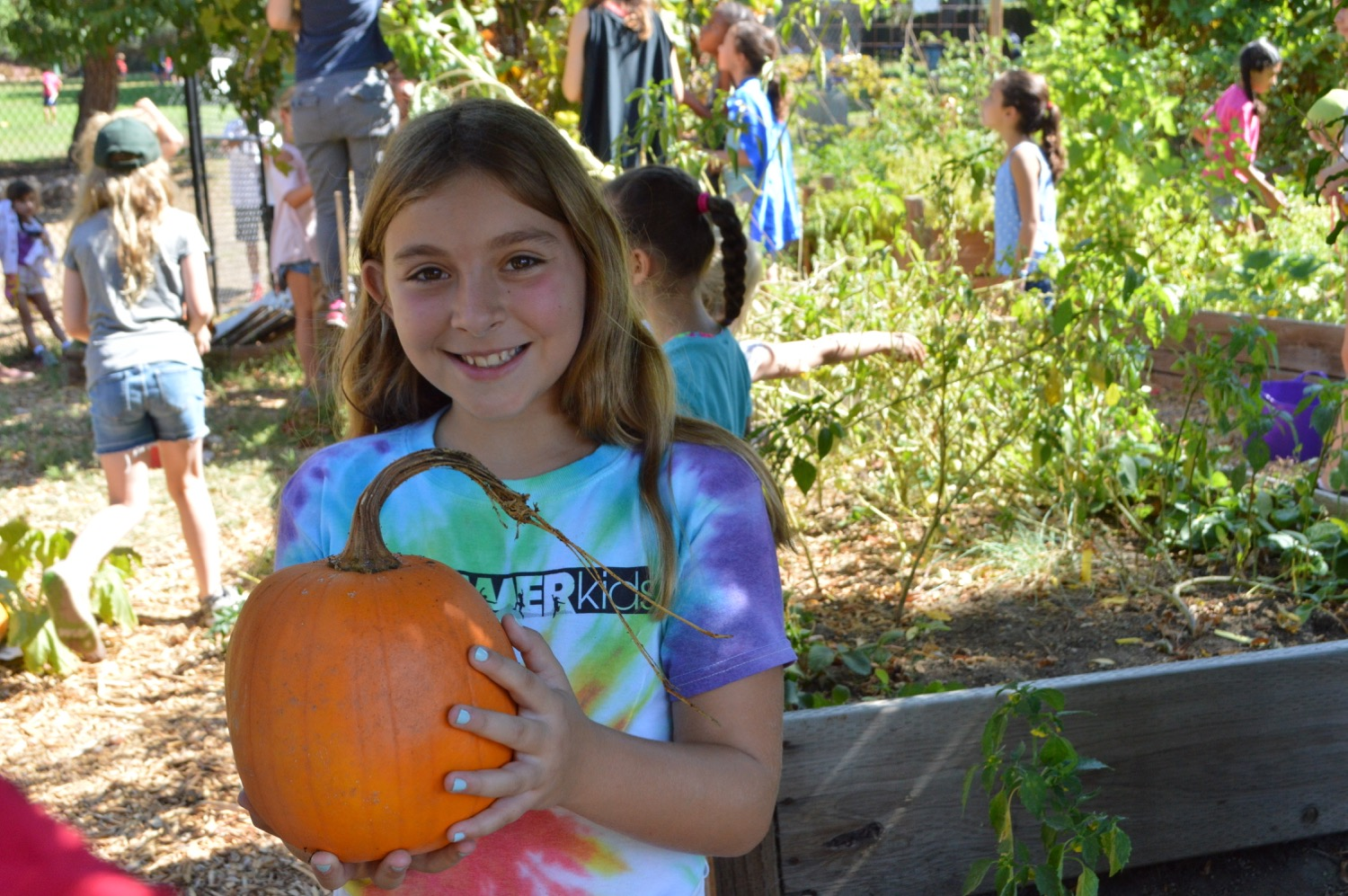 Campers might gather harvest from our camp garden,